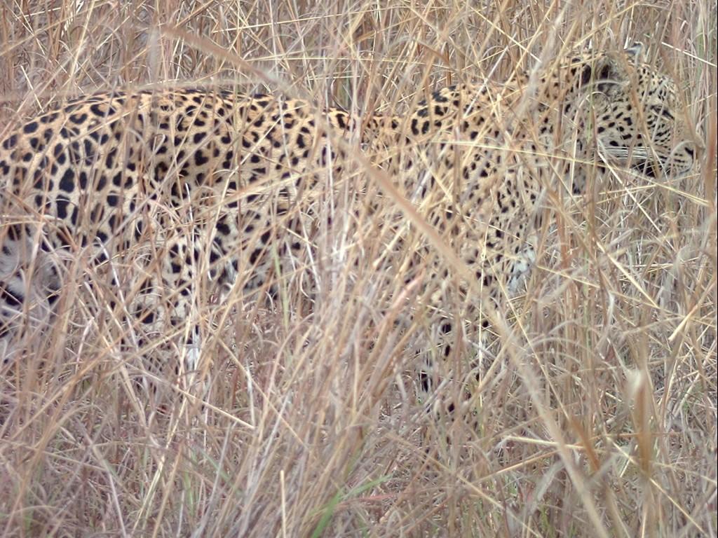 2005_08_Africa (50)